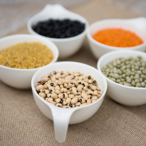 5 cups of assorted lentils arranged in a circle
